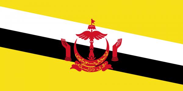 CRAS - Brunei Daressalam